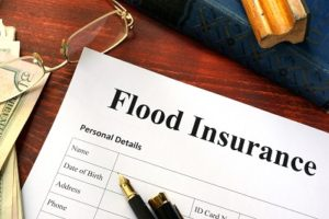 Harvey Flood Insurance Expert